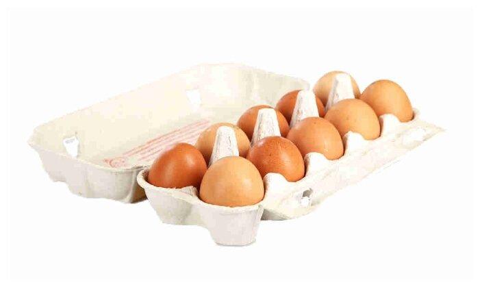 Яйцо куриное Волжанин С2