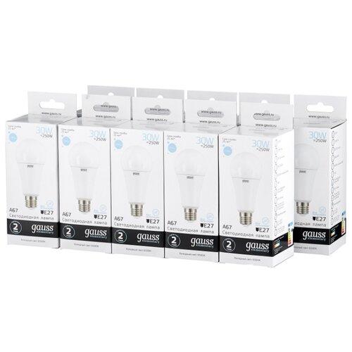 Упаковка светодиодных ламп 10 шт gauss 73239, E27, A67, 30Вт упаковка светодиодных ламп 10 шт gauss 73229 e27 a67 30вт