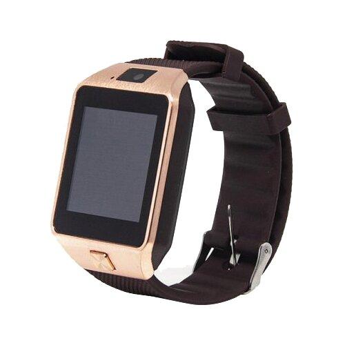 цена на Часы Smarterra Chronos X золотистый/коричневый
