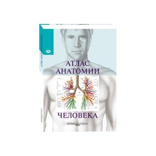 Купить Серова В. Атлас анатомии человека , Белый город, Учебные пособия
