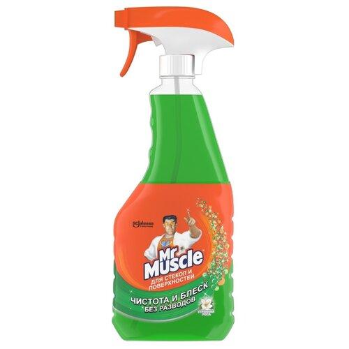 Фото - Жидкость Mr. Muscle Профессионал для стекол с нашатырным спиртом, 500 мл средство для стекол sanita со спиртом 1968 500 мл