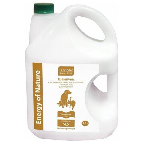 Шампунь Пчелодар Professional Energy of Natural питательный с маточным молочком и эластином Концентрат 1:4 5л