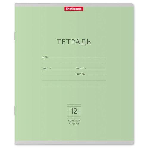 Купить ErichKrause Упаковка тетрадей Классика 35186, 10 шт., крупная клетка, 12 л. зеленый, Тетради