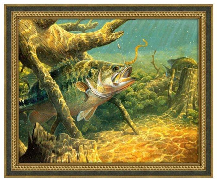 Алмазная живопись Набор алмазной вышивки Охота на наживку (АЖ-1145) 50x40 см — купить по выгодной цене на Яндекс.Маркете