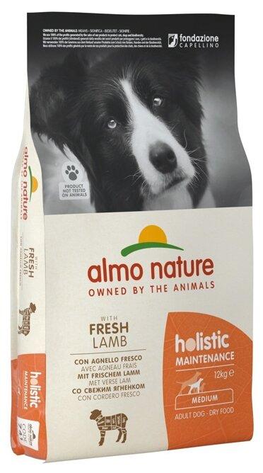 Корм для собак Almo Nature Holistic ягненок 12 кг (для средних пород)