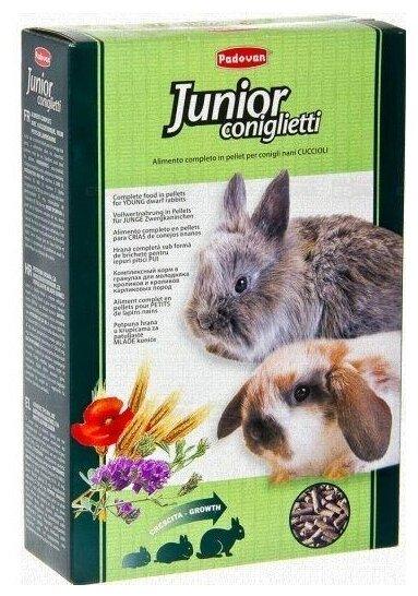 Корм для декоративных кроликов Padovan coniglietti