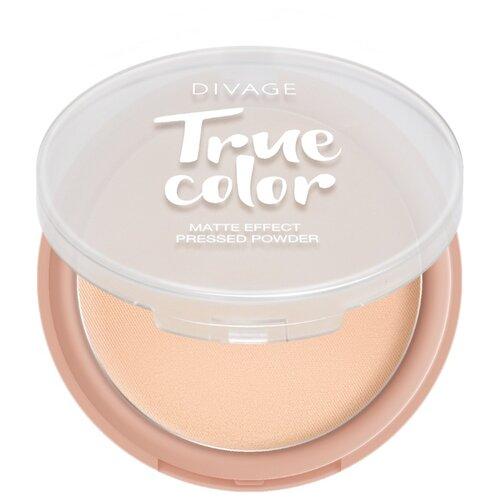 Купить DIVAGE Пудра компактная True Color 04 Sand