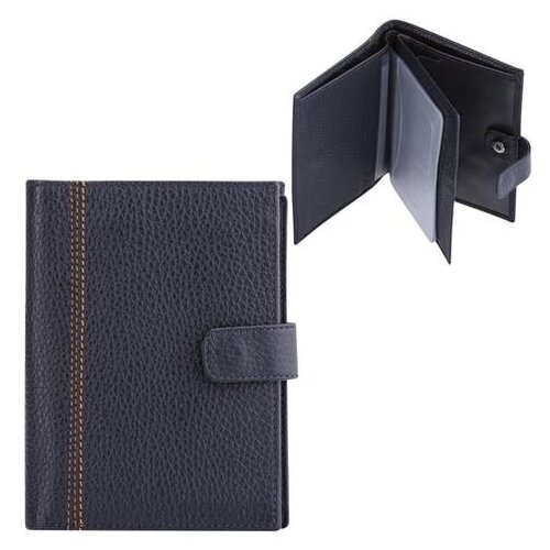 Бумажник водителя FABULA