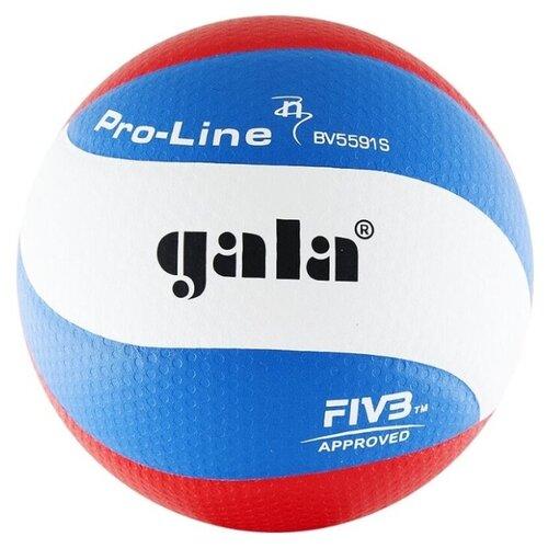 Волейбольный мяч Gala Pro-Line 10 FIVB белый/синий/красный