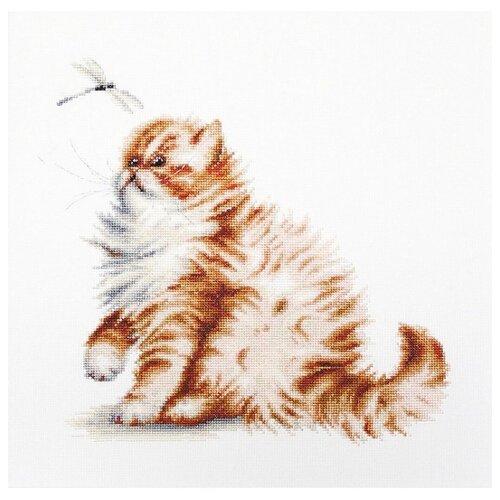 Фото - Luca-S Набор для вышивания Кошка со стрекозой, 22.5 х 22 см, B2270 luca s набор для вышивания щенок 8 х 10 см b088