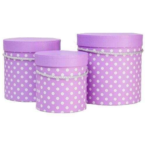 Фото - Набор подарочных коробок Shantou Jin Wei Ming Arts & Crafts Product Горох, 3 шт фиолетовый набор подарочных коробок tai an baoli paper product co ltd фауна 17 шт желтый
