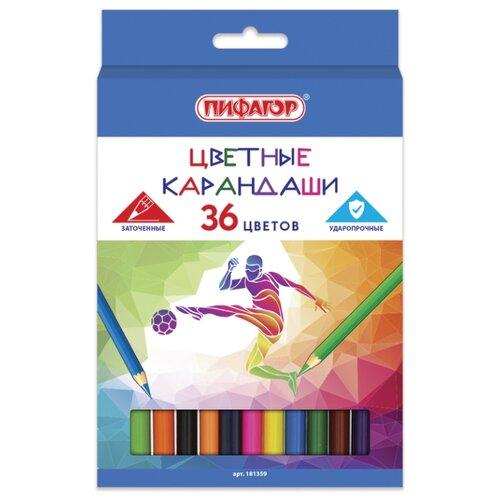 Купить Пифагор Карандаши цветные Быстрее! Выше! Сильнее! 36 цветов (181359), Цветные карандаши