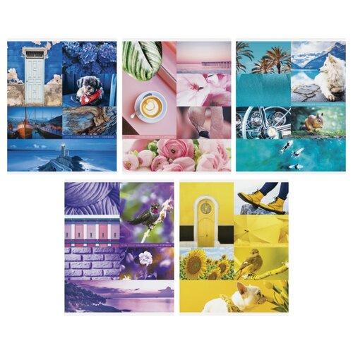 Купить ArtSpace Упаковка тетрадей Стиль. Colourful collage Т48к_24338, 10 шт./5 дизайнов, клетка, 48 л., Тетради