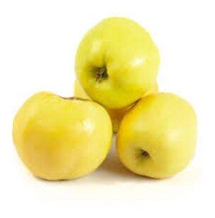 Яблоки Антоновка — купить по выгодной цене на Яндекс.Маркете