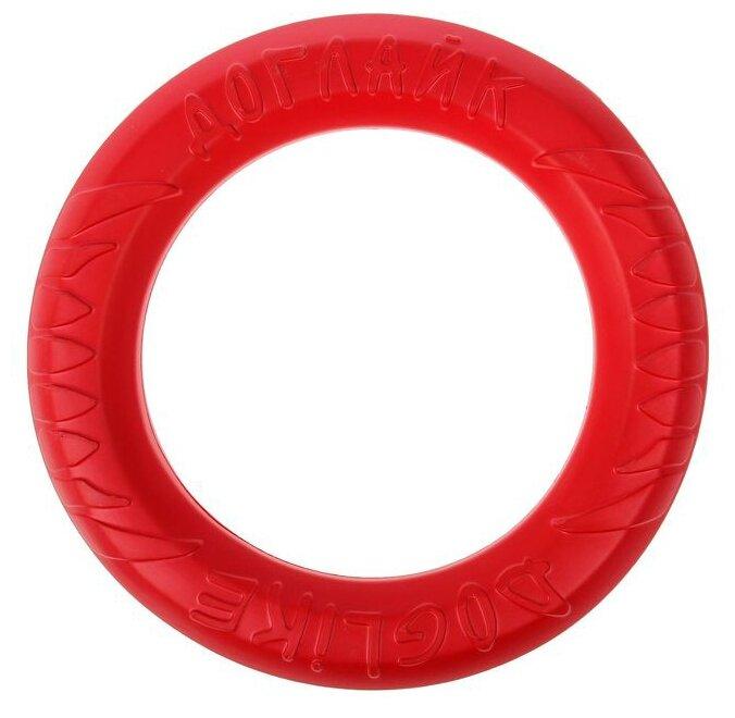 Кольцо для собак Doglike Снаряд Tug&Twist для профессиональной дрессировки большой (D-1272)
