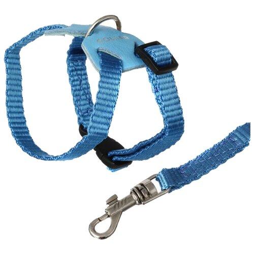 Шлейка COLLAR с поводком Extreme (6951/6952/6953) синий