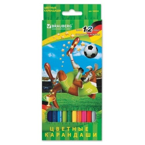 Купить BRAUBERG Карандаши цветные Football match 12 цветов (180534), Цветные карандаши