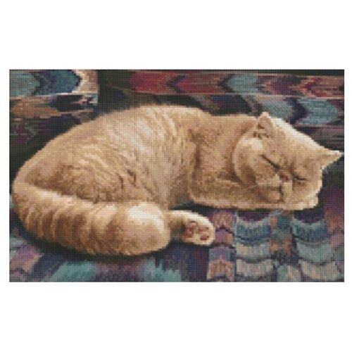 Алмазная живопись Набор алмазной вышивки Персидский кот (АЖ-1462) 40х30 см
