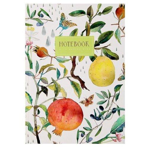 Купить Подписные издания Тетрадь Fruit, линейка, 24 л. белый, Тетради