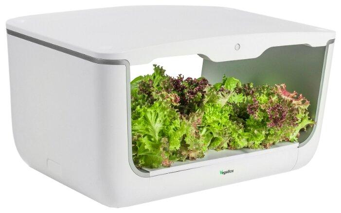 Набор для выращивания VegeBox Домашняя cадовая ферма
