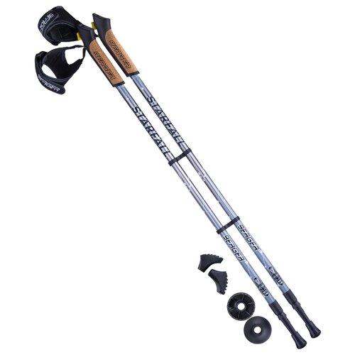 Палки для скандинавской ходьбы со сменными комплектующими BERGER Starfall 2-секционная 77-135 см серый/черный/белый