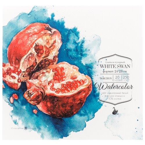 Купить Альбом для акварели Малевичъ White Swan 24 х 23 см, 250 г/м², 20 л., Альбомы для рисования