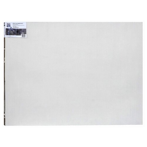Купить Холст Туюкан на подрамнике Живописный Т0003807, 70 х 100 см, Холсты