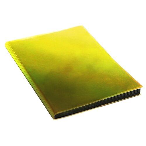 Ежедневник Канц-Эксмо Chameleon недатированный, А5, 136 листов, золотистый канц эксмо ежедневник канц эксмо фантастические цветы а5 128 листов недатированный