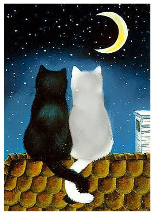 Настоящем, картинки котов влюбленных с надписями