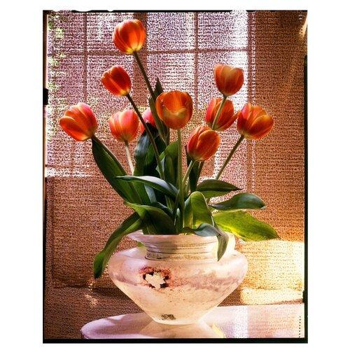 Купить Рыжий кот Картина по номерам Тюльпаны в прозрачной вазе 40х50 см (Х-3686), Картины по номерам и контурам
