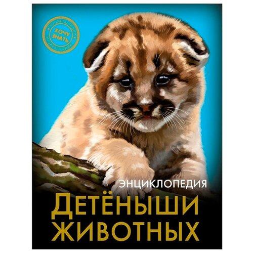 Купить Энциклопедия. Хочу знать. Детёныши животных, Prof-Press, Познавательная литература