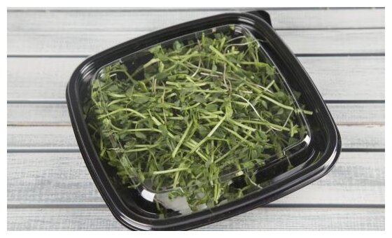 ВкусВилл Салат из свежей микрозелени 1, контейнер пластиковый (Россия)