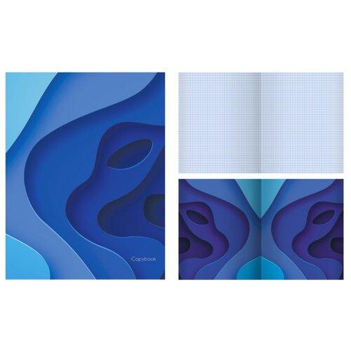Купить Канц-Эксмо Тетрадь ТК486437 в клетку, 48 л., blue, Тетради