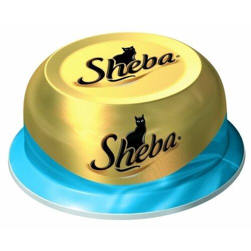 Корм для кошек Sheba Classic с тунцом 80 г (кусочки в соусе) влажный корм sheba appetito с тунцом и лососем 85г
