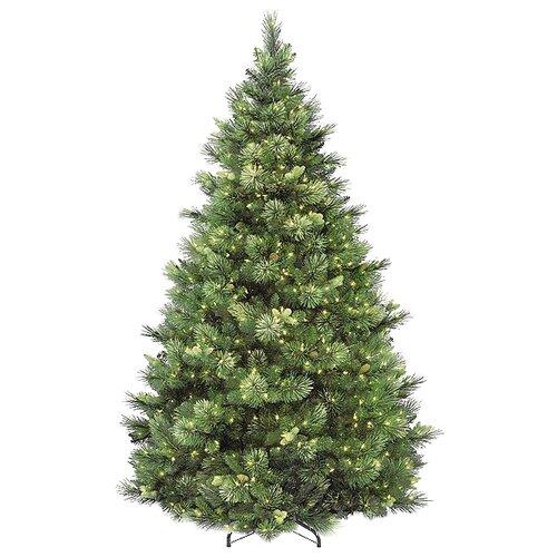 National Tree Company Сосна Каролина с лампочками, 183 см