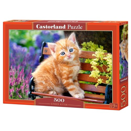 Купить Пазл Castorland Ginger Kitten (B-52240), 500 дет., Пазлы