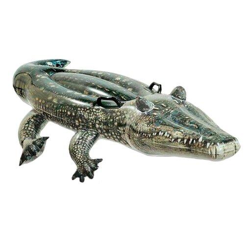 Купить Надувная игрушка-наездник Intex Настоящий аллигатор 57551 зеленый, Надувные игрушки