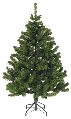 Triumph Tree Сосна Праздничная