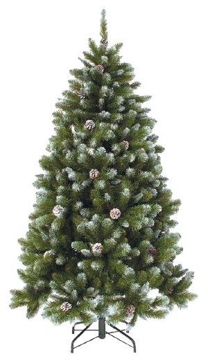 Triumph Tree Ель Императрица с шишками заснеженная