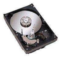 Жесткий диск Seagate ST380013AS