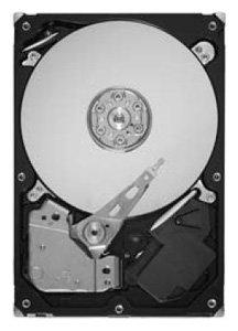 Жесткий диск Maxtor STM3500418AS