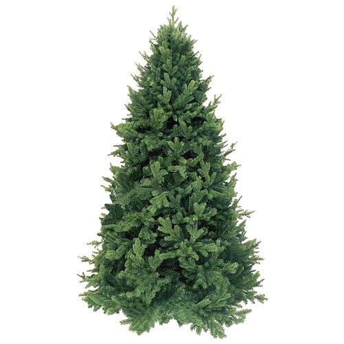 Фото - Triumph Tree Ель Царская зеленая, 230 см ель триумф норд 425 см зеленая 73078 triumph tree