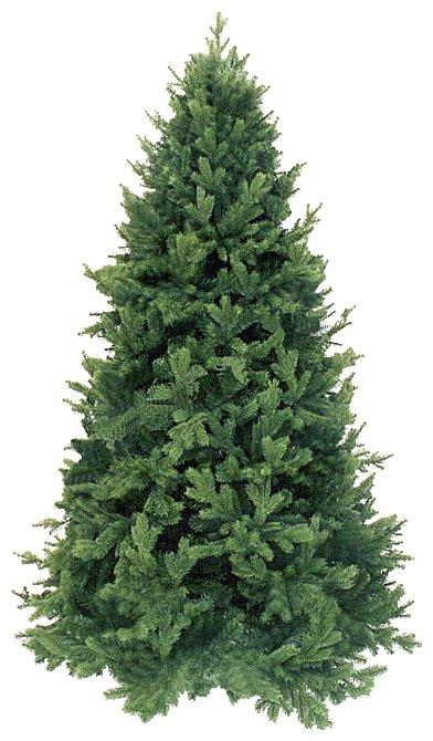 Triumph Tree Ель Царская зеленая 1.55