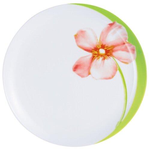 Luminarc Тарелка обеденная Sweet Impression 25 см белый luminarc тарелка обеденная armoise 25 см белый