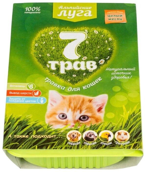 Лакомство для кошек Альпийские луга Травка 7 трав Набор для выращивания