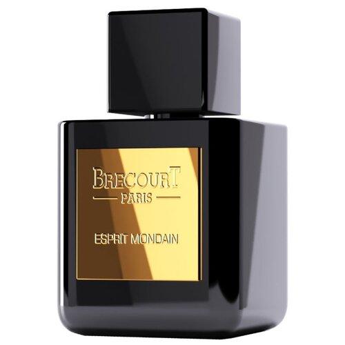 Парфюмерная вода Brecourt Esprit Mondain, 50 мл парфюмерная вода brecourt captive 50 мл