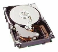 Жесткий диск HP 431954-003