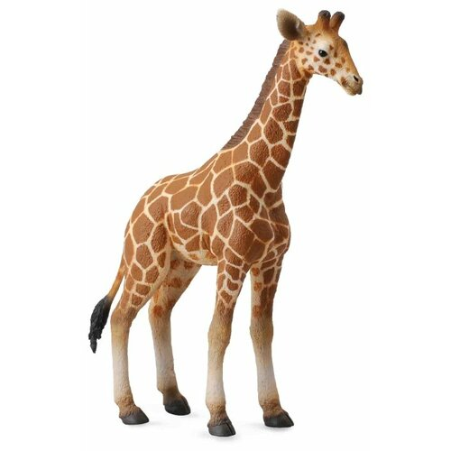 Фигурка Collecta Жеребенок Сетчатого Жирафа 88535