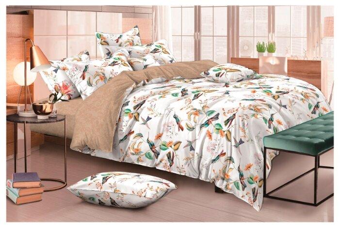 Постельное белье 2-спальное с евро простыней Василиса Мильфлер 833 сатин белый / коричневый