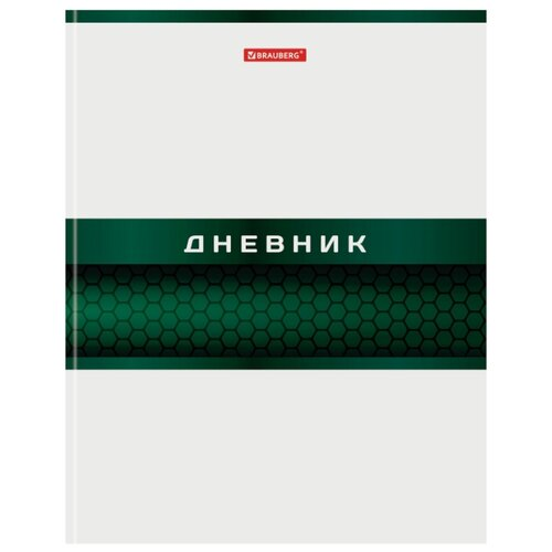 Купить BRAUBERG Дневник Металлик 105601 белый/зеленый, Дневники